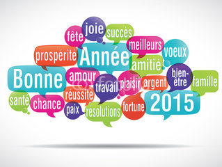 Photo voeux 2015